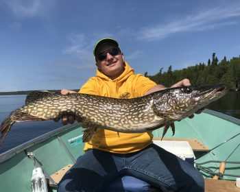 Northern Pike Fishing at Rainbow Point Lodge at Perrault Falls, on Perrault Lake, Ontario, Canada