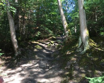 Up the trail at Perrault Falls
