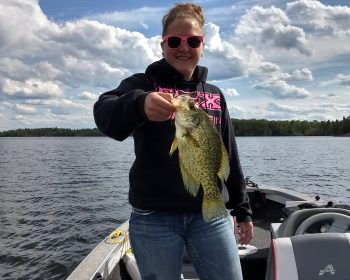 Huge Crappie caught on Perrault Lake