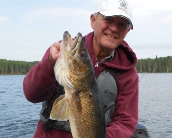 Randy releases 33 inch Walleye on Perrault Lake